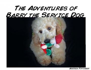 Adventures of Barry the Service Dog