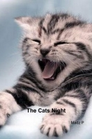 The Cats Night