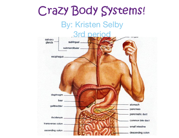 Crazy body systems!