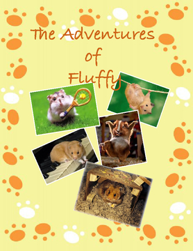 The Adventures of Fluffy