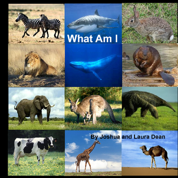 What Am I  (Animal Edition)