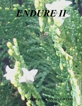 ENDURE II