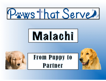 Malachi From Puppy to Partner