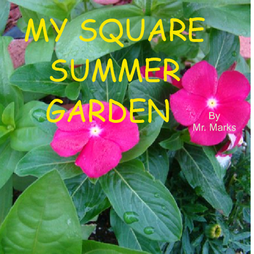 My Square Summer Garden