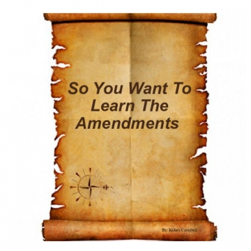 So You Want To Learn The Amendments