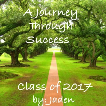 A Journey Through Success