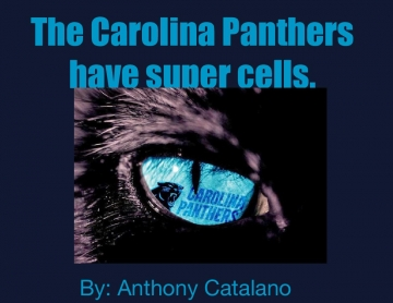 The Carolina  panthers have cells