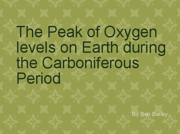 The Peak of Oxygen Levels on Earth During the Carboniferous Period