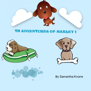 The adventures of Marley 1