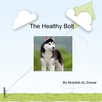 The Healthy Bolt