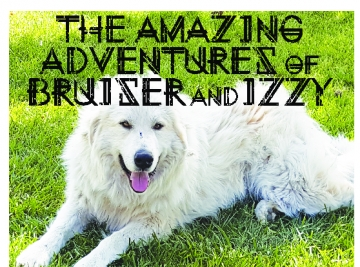 The Amazing Adventures of Bruiser and Izzy