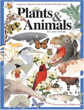 classifying of plants and animals