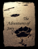 the adventures of Joey