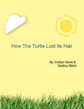 How The Turtle Lost Its Hair