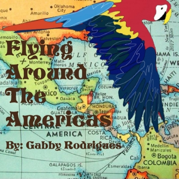 Flying Around The Americas