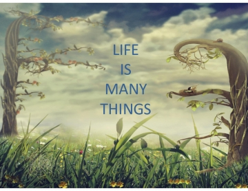 Life is Many Things
