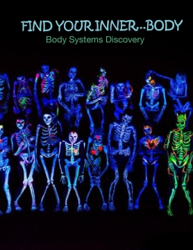 Body Systems Discovery