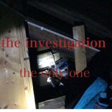 the investigation part one: the only one