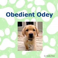 Obedient Odey