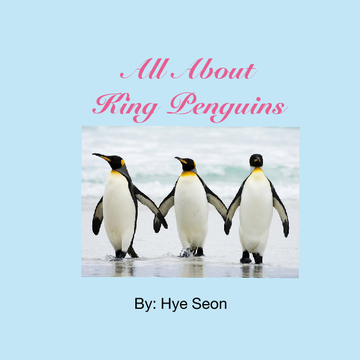 All About King Penguins