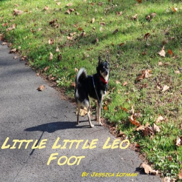 The Story of Little Little Foot
