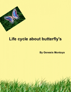 THE BUTTFLY LIFE CYCLE