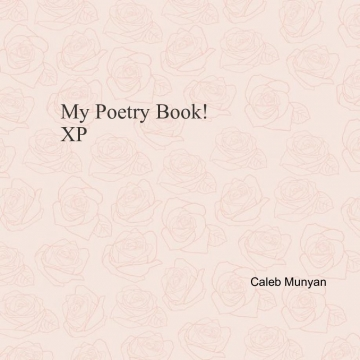 MY POETRY BOOK :-)