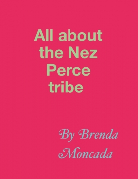 All about the Nez Perce tribe