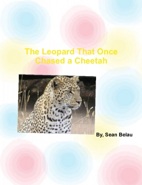The Leopard That Once Chased a Cheetah