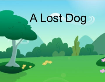 A lost dog