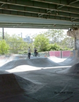 Day at the skate park