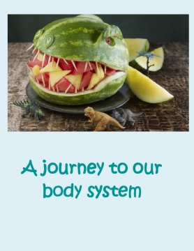 A journey to our body system