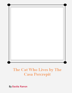 the cat who lived in The casa pecrepit