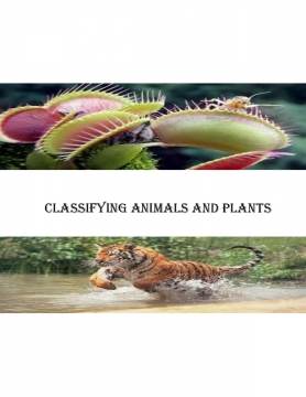 Classifying animals and plants