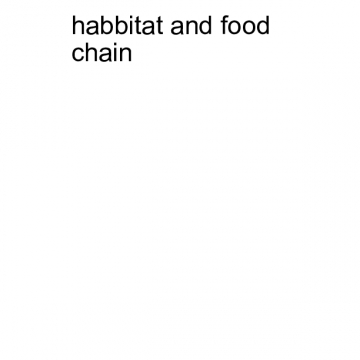 habitat and food chain