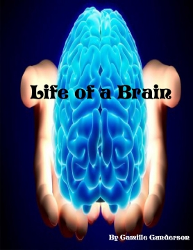 Life of a Brain