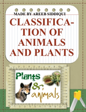classification of animals and plants