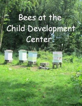 Bees at the CDC