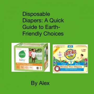 Disposable Diapers: A Quick Guide to Earth-Friendly Choices