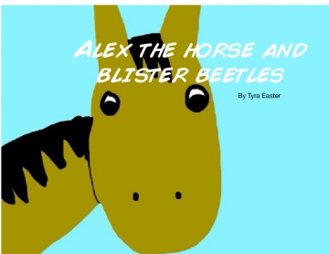Alex the horse and the blister beetles