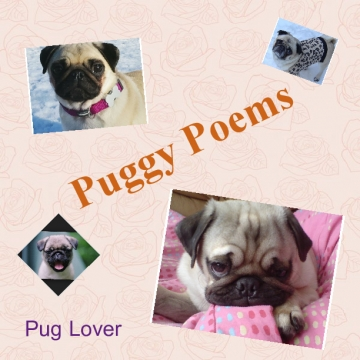 Puggy Poems