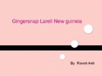 Gingersnap Larell NewGuineia