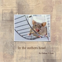 in the Head of a Auther