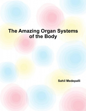 The 11 Organ Systems