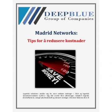 Deep Blue Group of Company Madrid Networks: Tips for å redusere kostnader