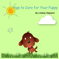 How to Care for Your New Puppy or Kitten