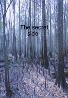 The Secret Side