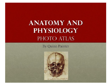 Anatomy and Physiology Atlas Project
