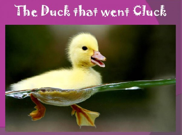 The Duck that went Cluck