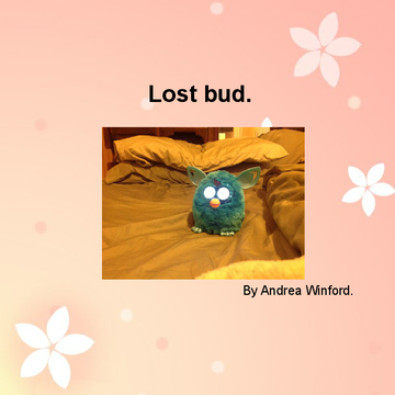 Lost old bud.